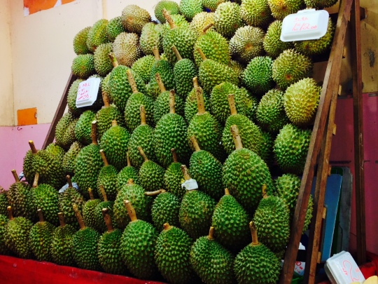 durian wall